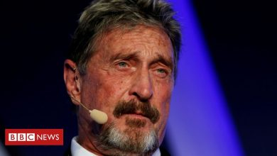 Photo of John McAfee accusé de fraude sur la crypto-monnaie
